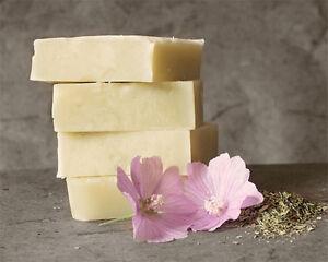 Ingrédients pour cosmétiques naturels