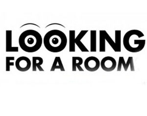 Young professional looking for a room $400-$550