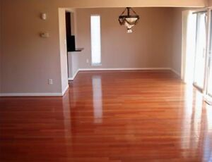 Move in/out cleaning available now!