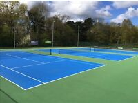 Tennis Partner - Intermediate level