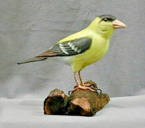 Hand Carved Wooden State Bird of Iowa, New Jersey & Washington Gold Finch