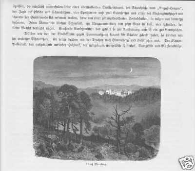 Schloss Wernberg Sternberg Kärnten HOLZSTICH von 1880