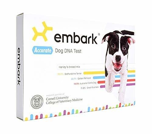 dog dna test kit breed genetic ancestry