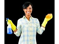 Cleaner Required for 4-6 hours per week