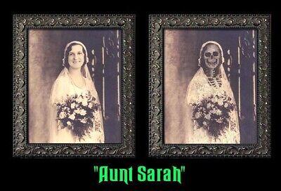 Haunted Halloween Portraits (Aunt Sarah 5x7 Haunted Memories Changing Portrait Halloween Lenticular)