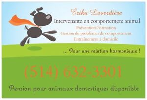Pension canine / Garderie chien / Animaux domestiques