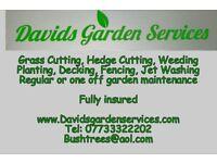 David's Garden Services - Ashford Kent Landscapers