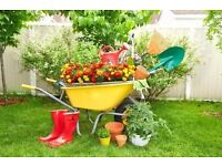 Gardening services - From £15-£20 - First 2hrs - £20/h, next hours - £15/h