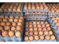 Day Fresh Free Range Eggs Delivered To Your Door