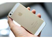 Iphone 5S Gold (32GB)