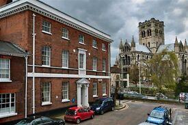 Great room in lovely flat on best street in Norwich