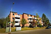 Large one Bedroom is available at 15825 Beaumaris Rd, Edmonton,A