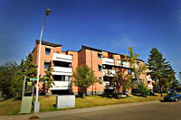 Large Two Bedroom is available at 15825 Beaumaris Rd, Edmonton,A