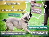 Dog walker/dog behaviour training
