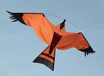 scarer, protect crops, farmer, allotment, fish pond (Kite-kits)