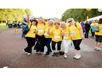 Volunteer at Marie Curie's Walk Ten Northern Ireland