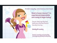 Friendly,honest and reliable domestic cleaner