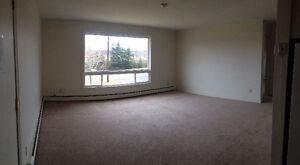 Two Bedroom Close to Rec Park - Bible Hill
