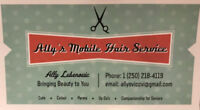 Ally's Mobile Hair Service