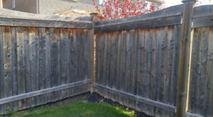 FENCE, Emergency fence repair , PAINTING, BUILD