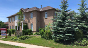 Awesome Detached Brampton Home With Finished Basement Apartment