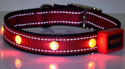 Best Light Up Dog Collars - LED Dog Collars - Adjustable - 4 Light Up