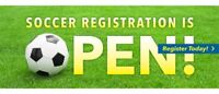 Sunday Coed Soccer   Adult Teams Wanted !!