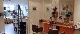 Senior Stylist - Manager - Hairdresser