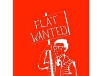 WANTED. 3 or more bedroom flat.