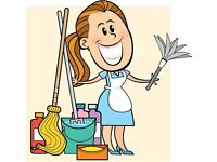 Cleaner / Personal Assistant
