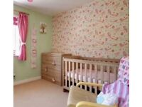 Cot Bed and matching Chest of Draws