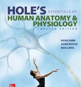 Hole's Essentials of Human Anatomy & Physiology, 12th Edition Kitchener / Waterloo Kitchener Area image 1