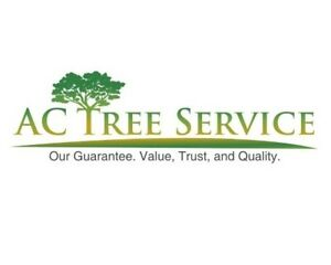 AC Tree Service - Free Estimate - Insured  - 647 539 9585