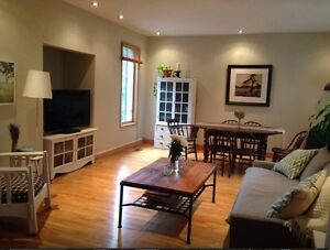 Great 2 storey furnished in centertown