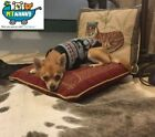 Chihuahua Clothing & Shoes for Dogs