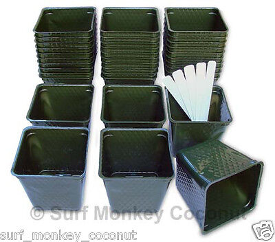 NEW Plastic Nursery PLANT POTS, 36 qty lot +5 FREE SEED LABELS! Green containers