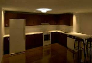 $1900 / 4br - 1000ft2 - Plateau new 6 1/2 apartement Coloniale n