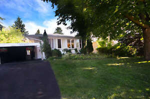 Very nice Bunglow in heart of Richmond Hill