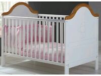 OBaby 'B is for Bear' Cot/Toddler Bed for Sale