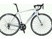 Giant Defy 1 (L) White/Blue