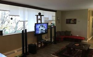 2-bedroom unit in An clachan for sublet (available on Dec. 1st) Kingston Kingston Area image 2