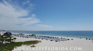 St Pete Beach Florida Condo December 30 - January 6