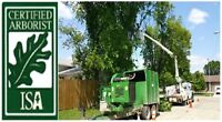 ★ NEED TREE SERVICE?   |   AFFORDABLE RATES   |   204-318-6744