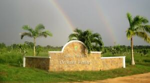 Belize - Full Acre - Bare Land - Investment Opportunity!!