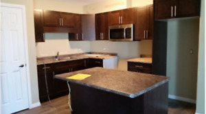 Brand new 2 bedroom apartment available Jan. 1st