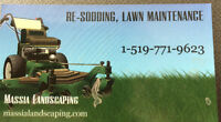 Grass Cutting/Lawn Care/Lawn Maintenance From $30.00 FreeQuote