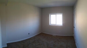 Rooms for Rent!!!! New Build!!! Kitchener / Waterloo Kitchener Area image 8