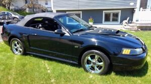 2002 Mustang GT Convertible