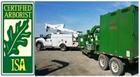 ★ PROF. TREE CARE SERVICE  |  FAIR PRICES   |  204-318-6744
