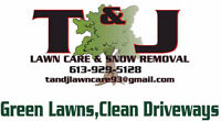 Now Booking Clients For Fall Clean Up And Fertilizing Packages!